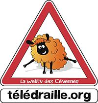 TELEDRAILLE